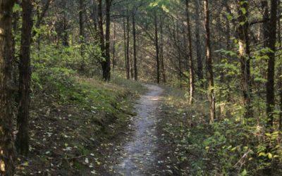 Take Our Trail Quiz